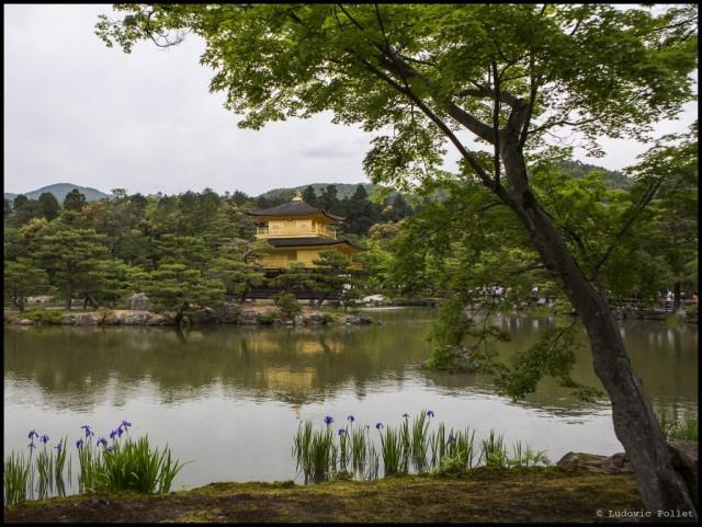 11_Japon_M93A7787_EDT-1024x771