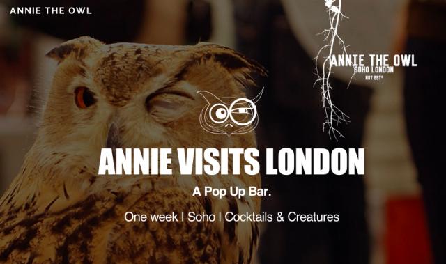 Owl-Cafe-Soho-London