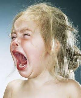 Restaurant bans 'small screaming children'