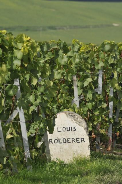 louis roederer Stone marker