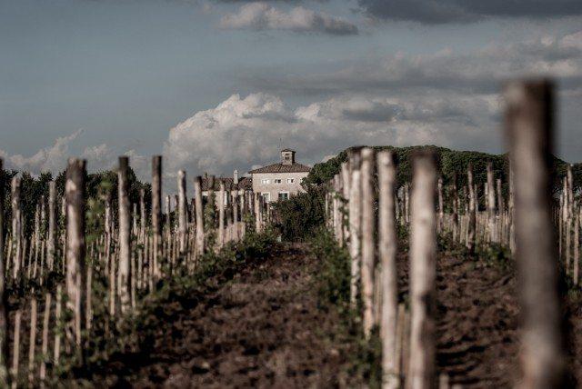 'Her' Fattoria di Fiorano winery (Photo: Fattoria di Fiorano)